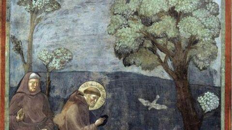 Giotto di Bondone. La prèdica als ocells.
